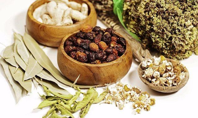 Bài thuốc Đông y chữa bệnh nấm âm đạo