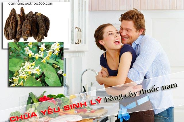 Chữa bệnh yếu sinh lý cho nam giới bằng cây thuốc nam