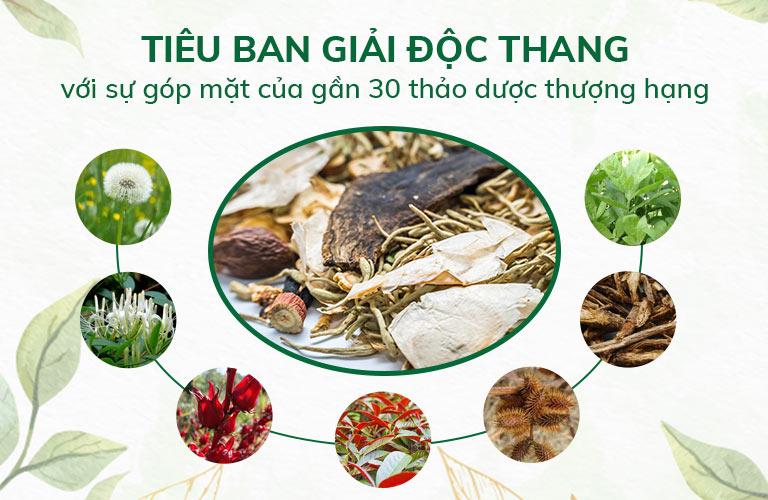 Bài thuốc hòa quyện nhiều vị thảo dược quý đạt chuẩn chất lượng GACP - WHO