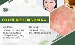Cơ chế điều trị viêm da tại Quân dân 102